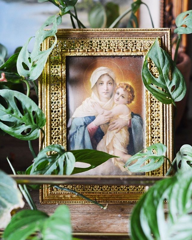 Despite me considering myself to be more spiritual than religious, I've always found catholic art to be so romantic in its highly gilded expression of devotion.This antique Italian brass religious art - seen nestled between monsteraadansonii🌱💕- is coming soon! Oh, and Happy #monsteramonday • • • • •  #plants #religiousart #houseplants #houseplantjournal #houseplantsofinstagram #plantparenthood #greenthumb #plantphotography #urbanjunglebloggers #urbanjungle #jungalow #monsteradeliciosa #philodendron #houseplantclub #plantsmakepeoplehappy #plantscout #monsteraadansonii #aroidaddicts #aroids #alocasia #jungalowstyle #bohostyle #plantparenthood #vintagedecor #christianart #catholicart #plantladyco #bohemian #interiordesign