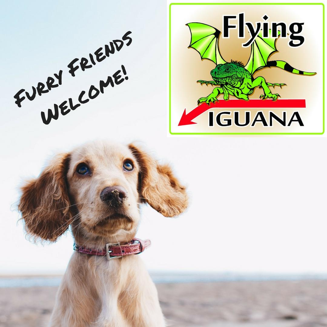 Furry Friends Welcome!.jpg