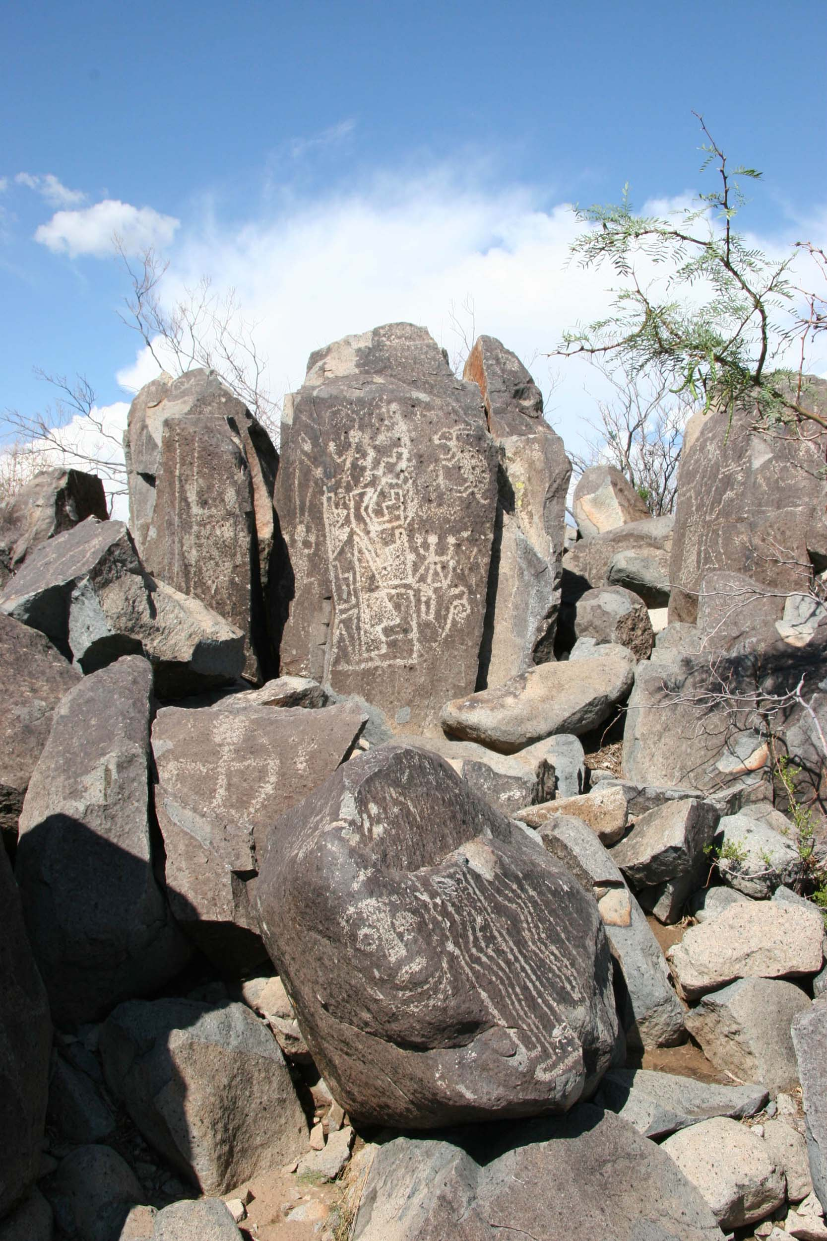 Fig.3 - 'Three Rivers' Petroglyph Site New Mexico