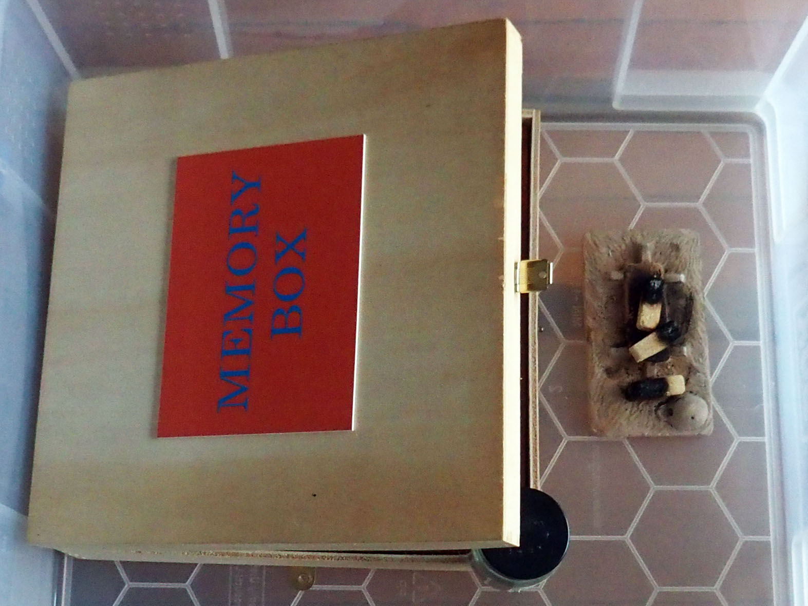 Image 8 - Memory Box - Smoking the box with piñon incense