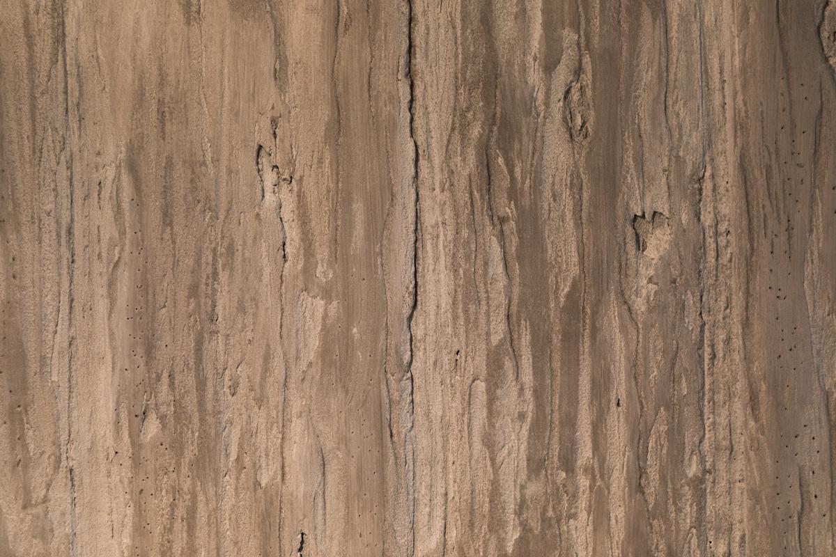 Petrified Wood Finsih C.jpg