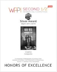 wppi silver award dayle ann clavin.jpg