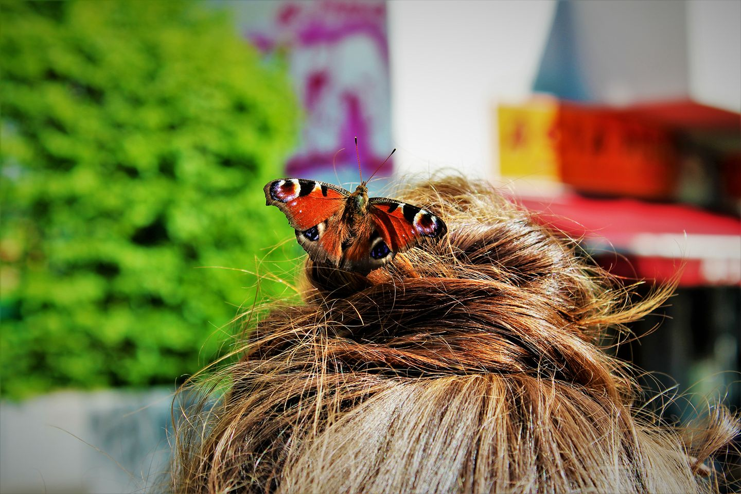 Our news editor, Kimberley, bonds with a butterfly in Berlin
