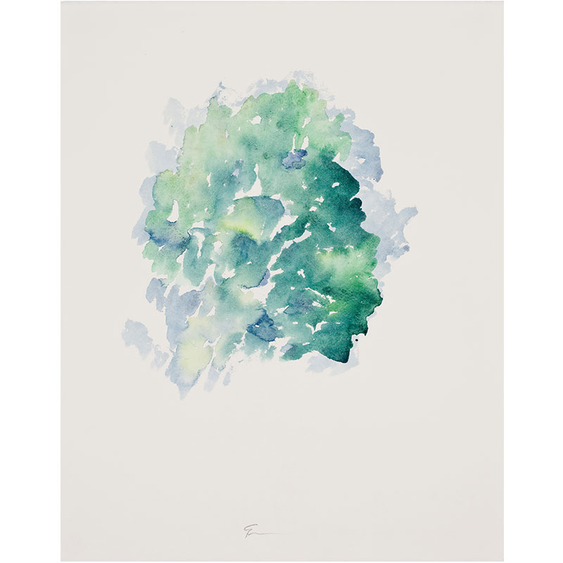 """My Neighbor's Tree, Spain , 2009 watercolor on paper 20.5 x 16.25"""" paper  Inquire >"""