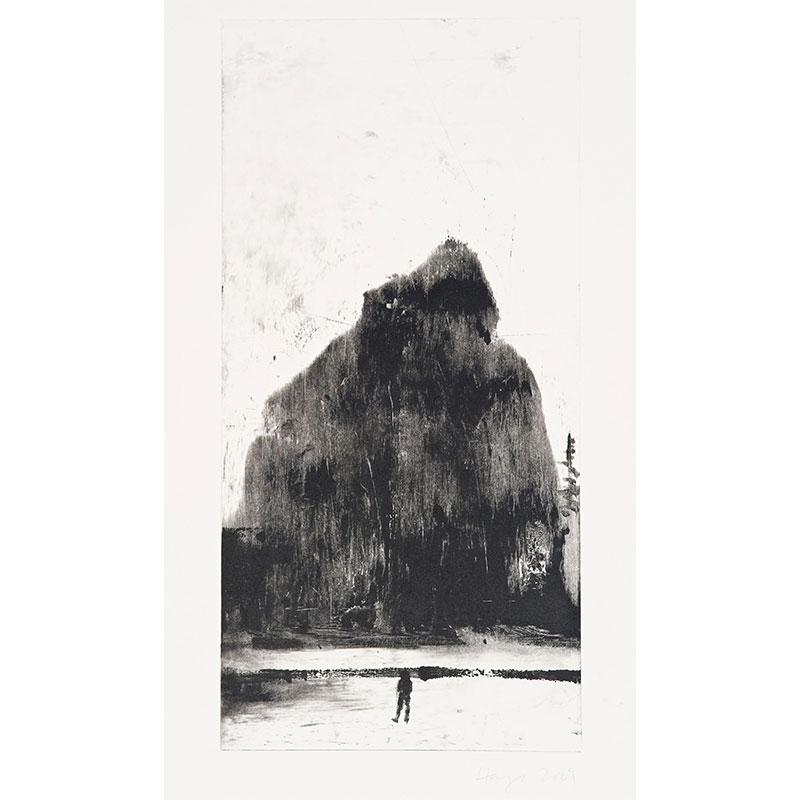 "Oakland Suite: Wild Beauty 6 , 2009 monoprint 22.5 x 15"" paper 17.75 x 8.75"" image  Inquire >"