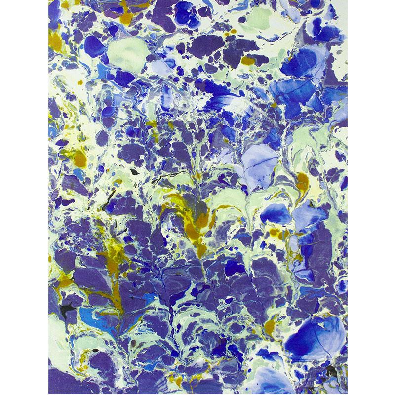 "Blue Murmur , 2015 screenprint on aluminum panel 30 x 23""  Inquire >"