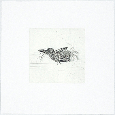 Bird Skeleton , 2000 etching and aquatint Edition of 24