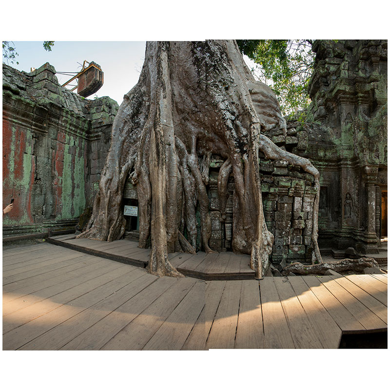 "Angkor VI , 2018 assembled archival inkjet print 18 x 22"" image  Inquire >"