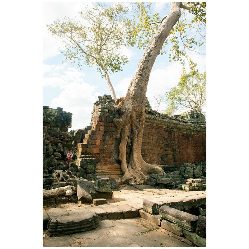 "Angkor XI , 2018 assembled archival inkjet print 18 x 27"" image"