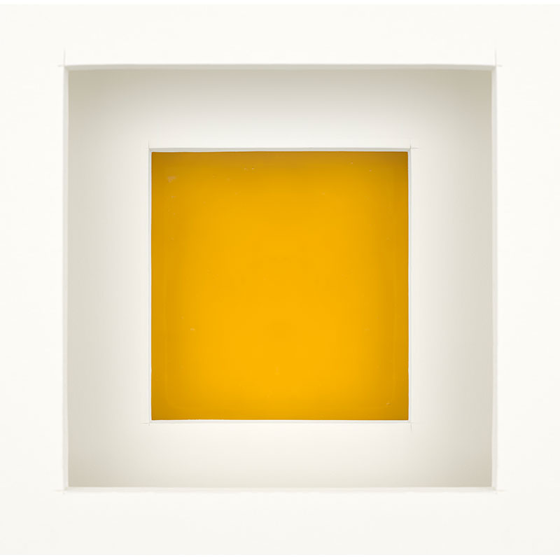 "Untitled  (egg yolk), 2018 photographic construction 34 x 35"" image 35.75 x 36.25"" framed Edition of 8, 2AP  Inquire >"