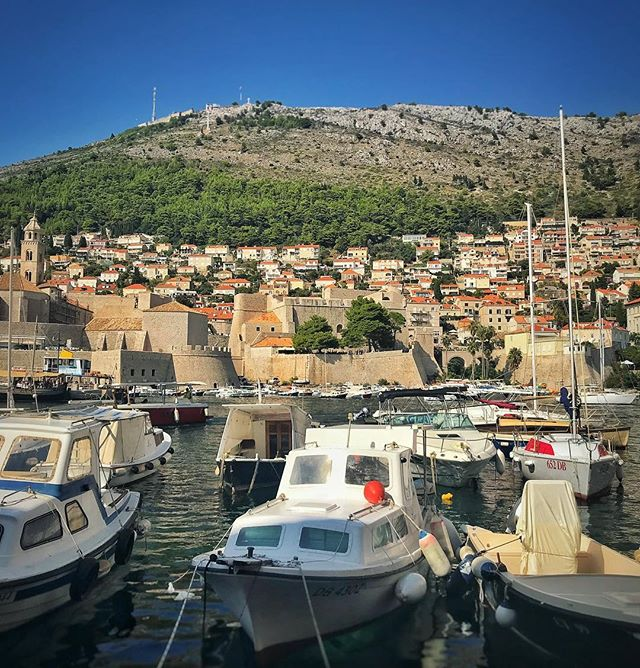 Lunching next to the Old Port in #Dubrovnik. Love those gradations of gray to green up on the hillside. 👌⛰🛥 . . . #croatia #boats #harbor #travel #travelphotography #vacation