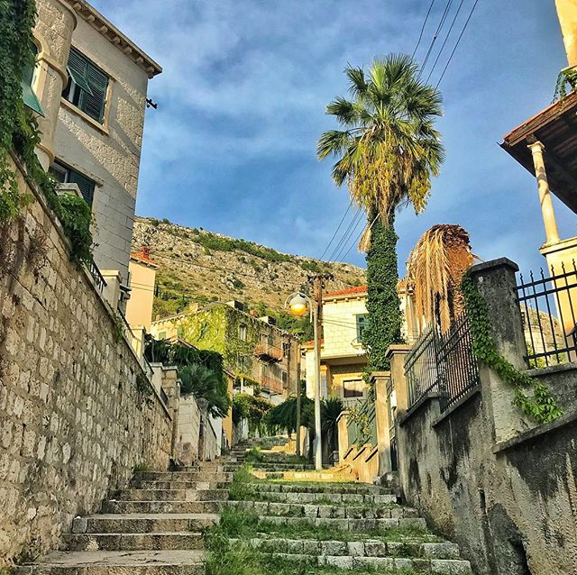 #Dubrovnik, you were good to us. All 3 million steps up to our Airbnb and all 💪 . . . #croatia #palmtrees #stairs #travel  #travelphotography