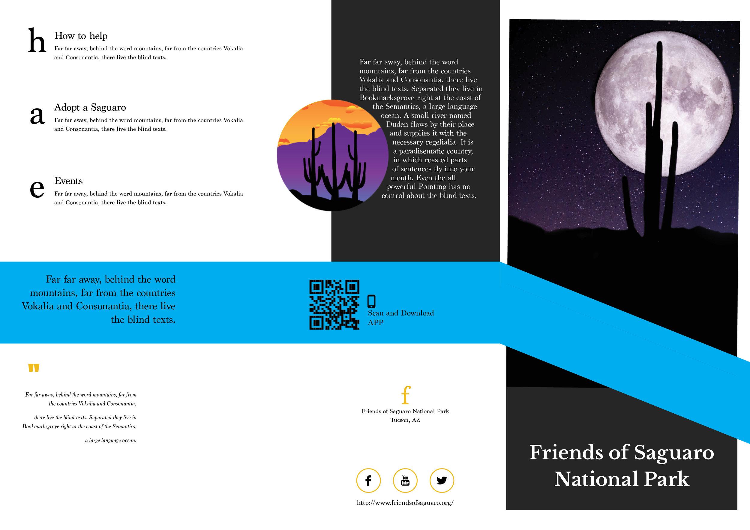 FOSNP brochure.jpg