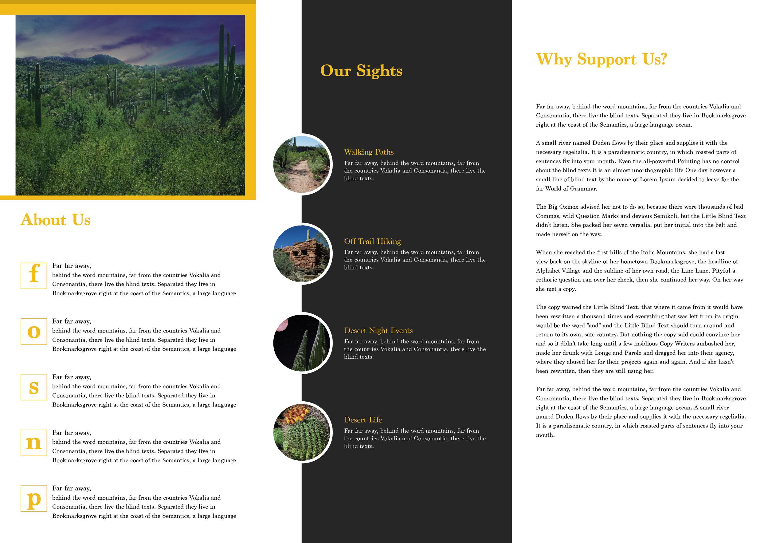 FOSNP brochure2.jpg