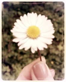 Life is making daisy chains out of those flowers within reach...