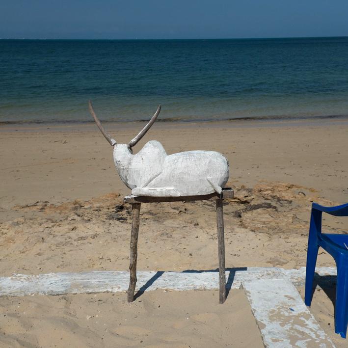David Lemor-Manguili 02-Madagascar.jpg