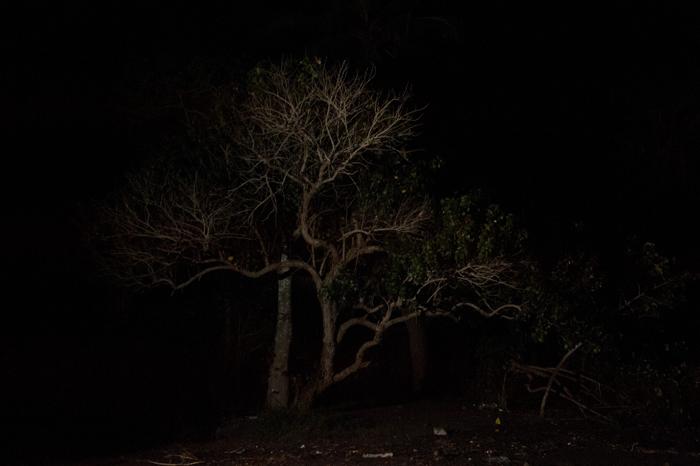 david Lemor-Snapshots 43-Mayotte.jpg