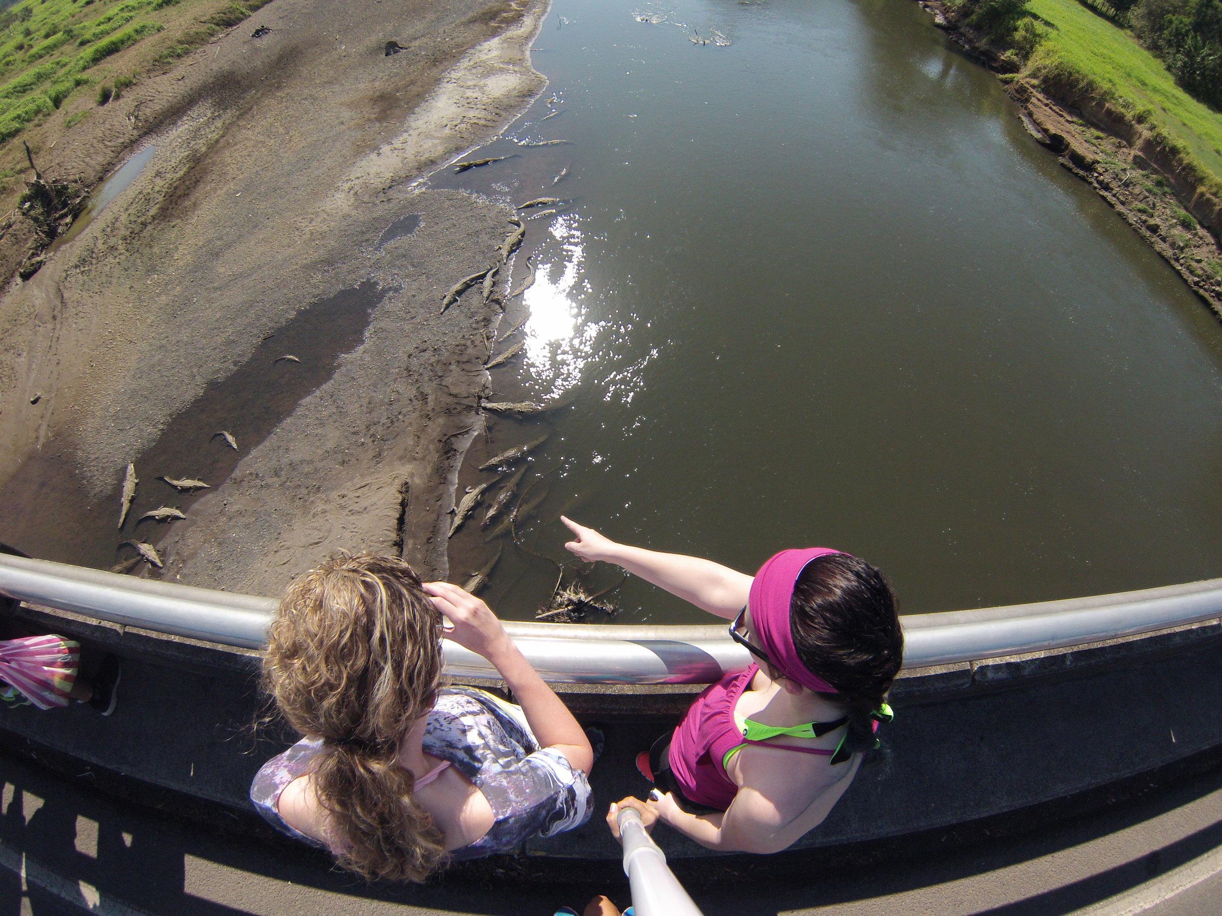 Crocodile & Bird watching tour - Enjoy of Costa Rica's main crocodile river