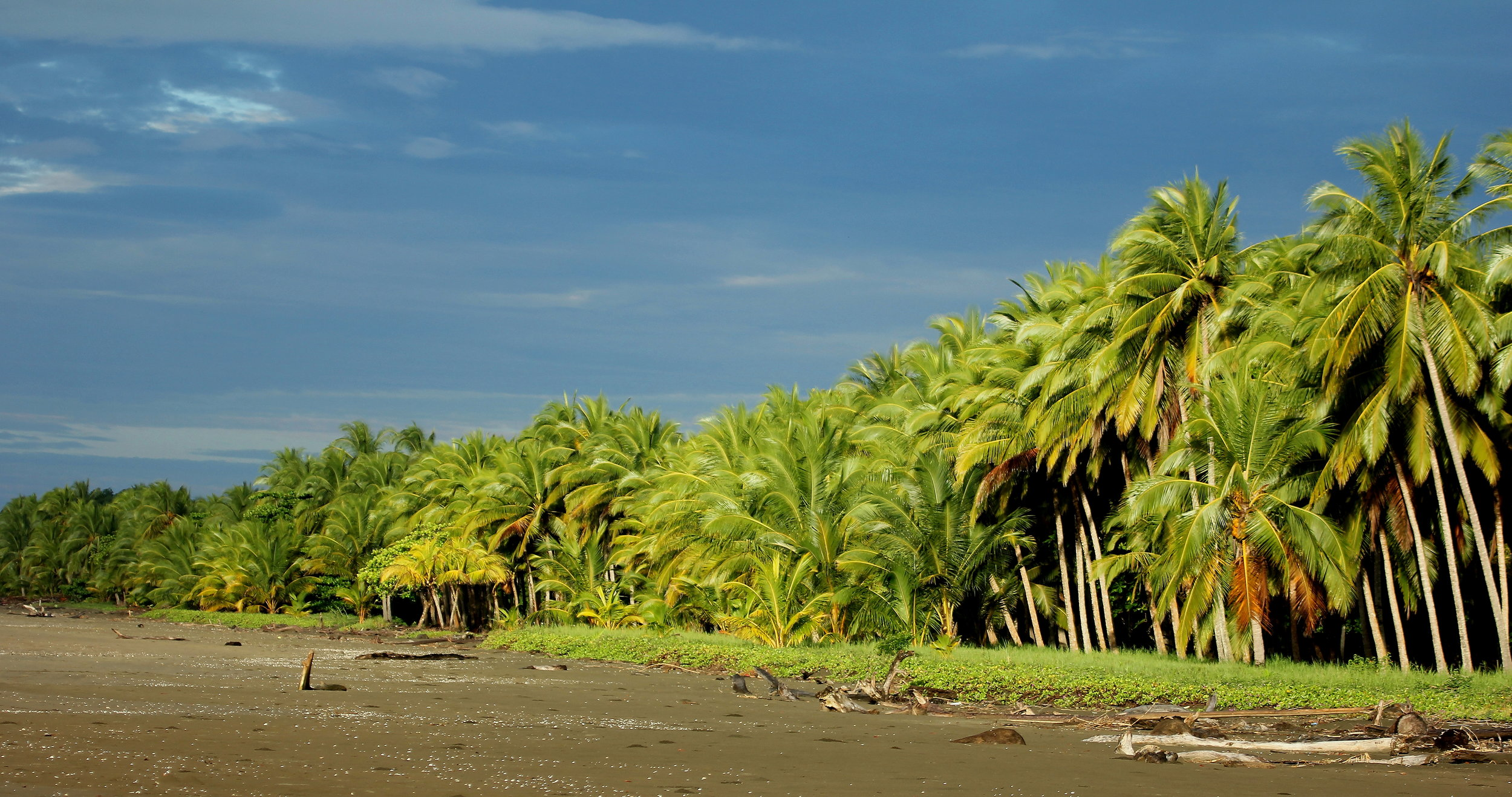 ADVENTURE TOURS - Get lost in the most exiting activities on this tropical land