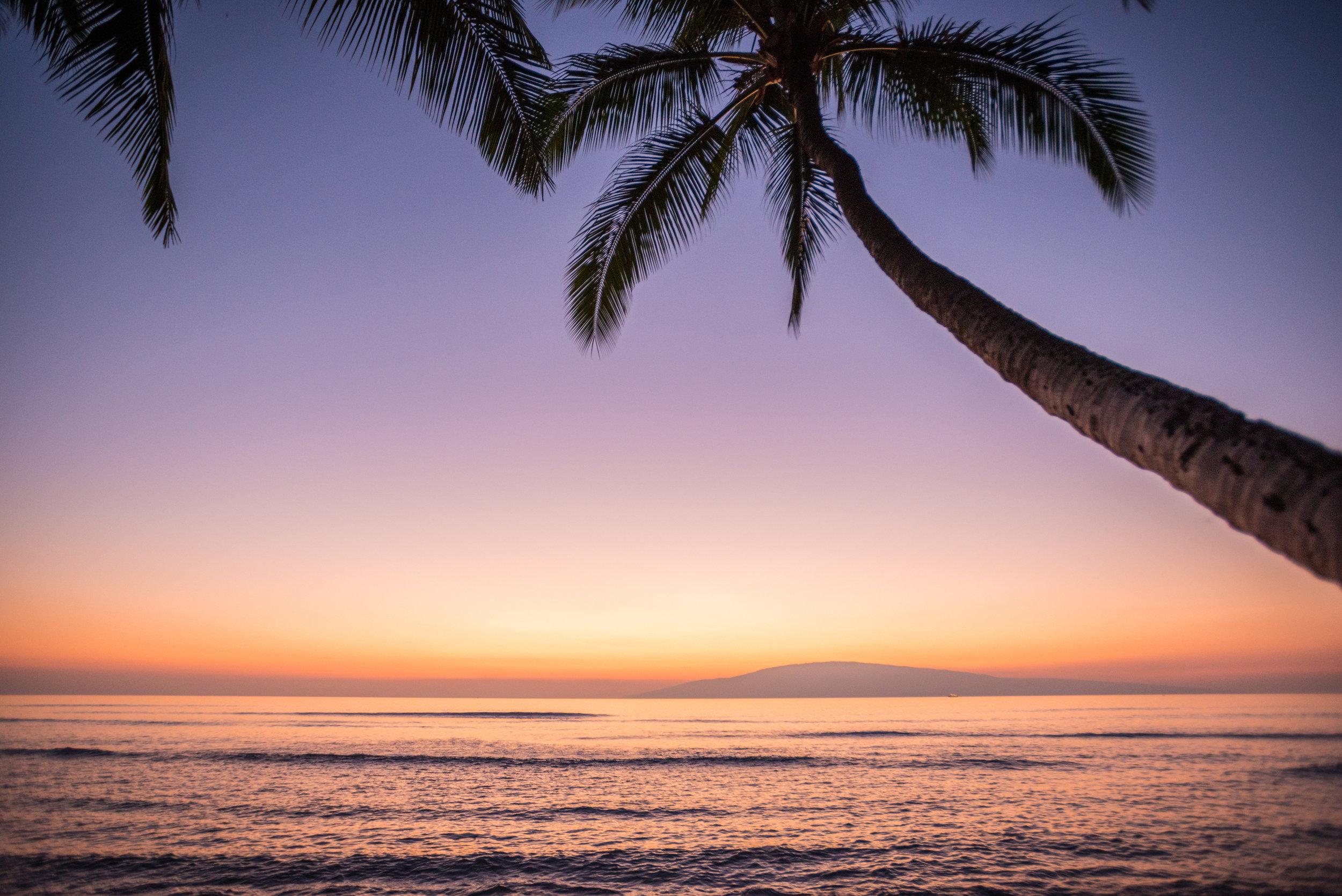 Chris_Majors_Maui-9059.jpg
