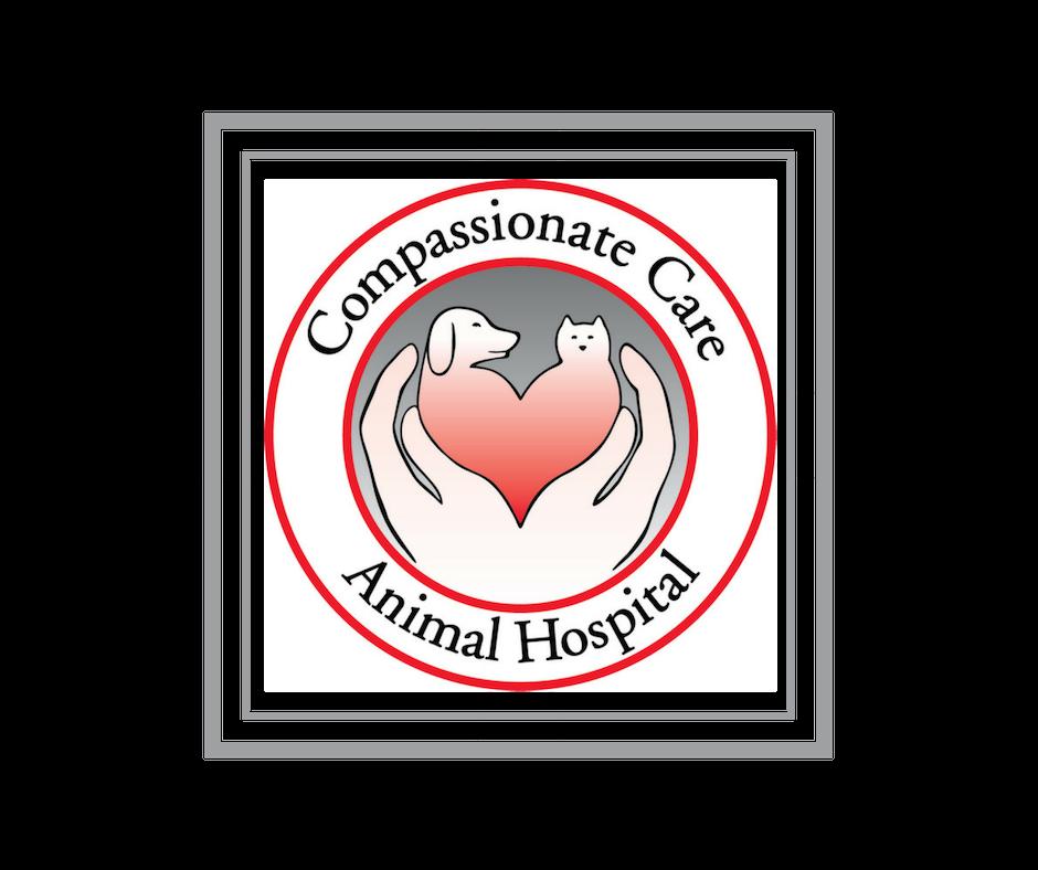 large-CCAH_Blog Pic_logo.png