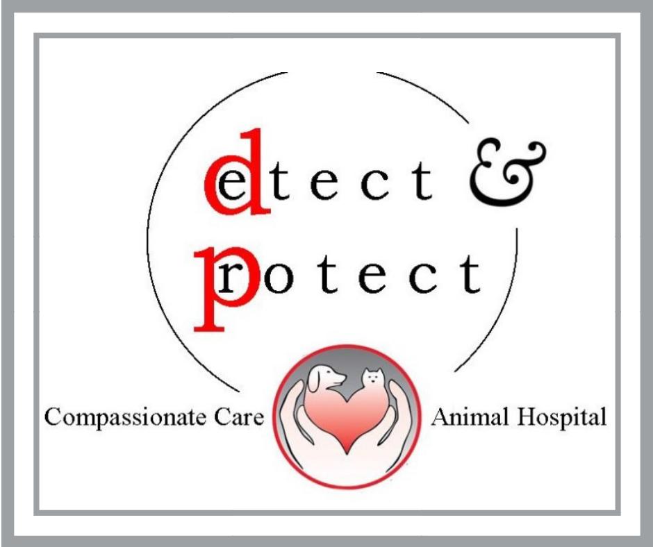 wellness diagnostics_detect-protect.png