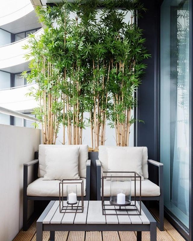I'm currently working on a patio design and am really loving these looks! Black and white adds sophistication while greenery livens up the space!  Source: @pinterest