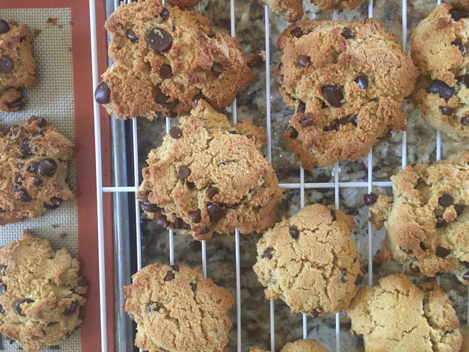 Grain-free chocolate chip cookies from Against All Grain, made with coconut flour and almond flour!