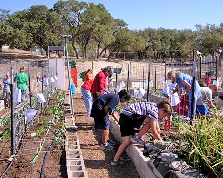 planting_2011.jpg