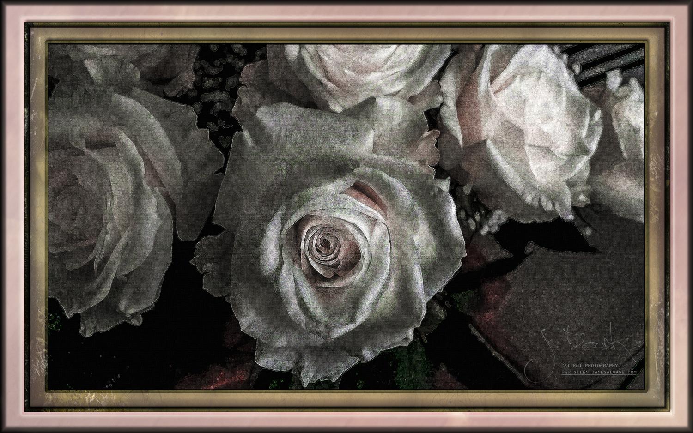 Crackleture White Roses