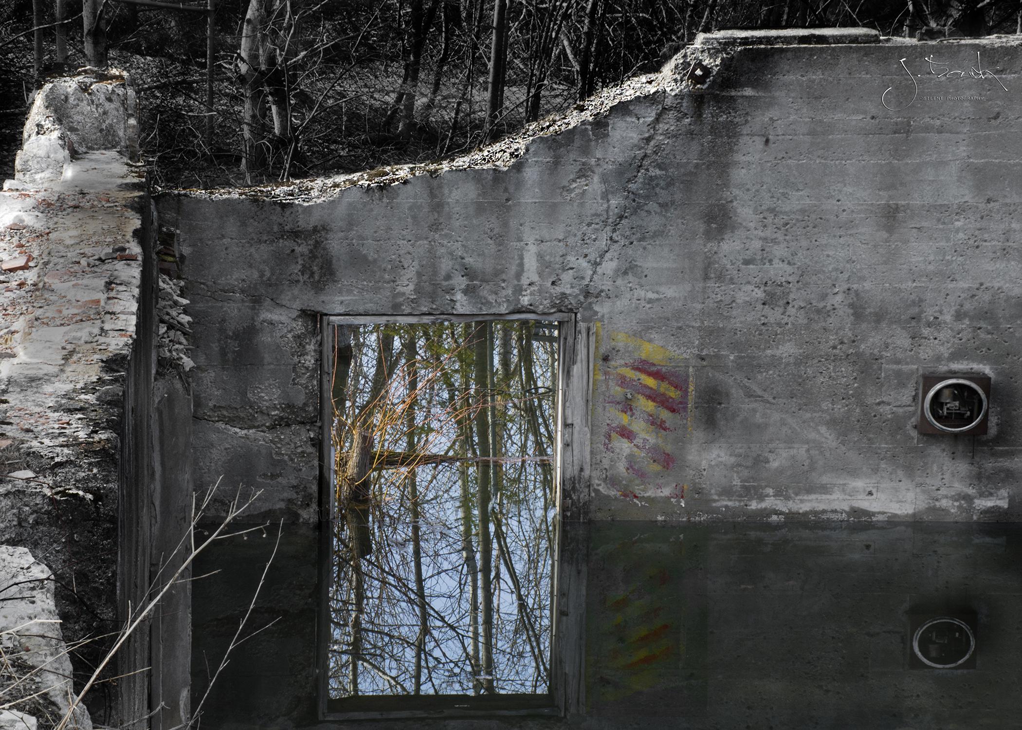 Reflection 4308