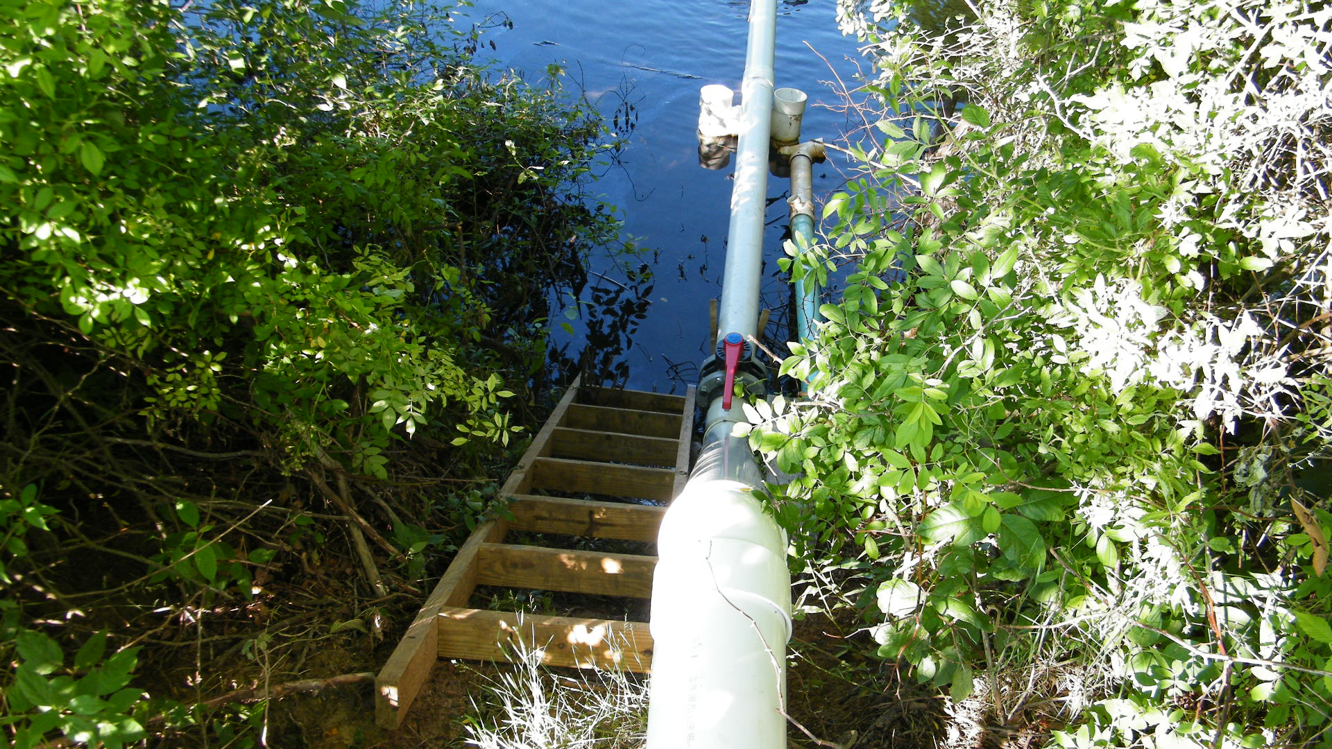 10.0610 Beaver Dam Project-06-20-10 007.jpg