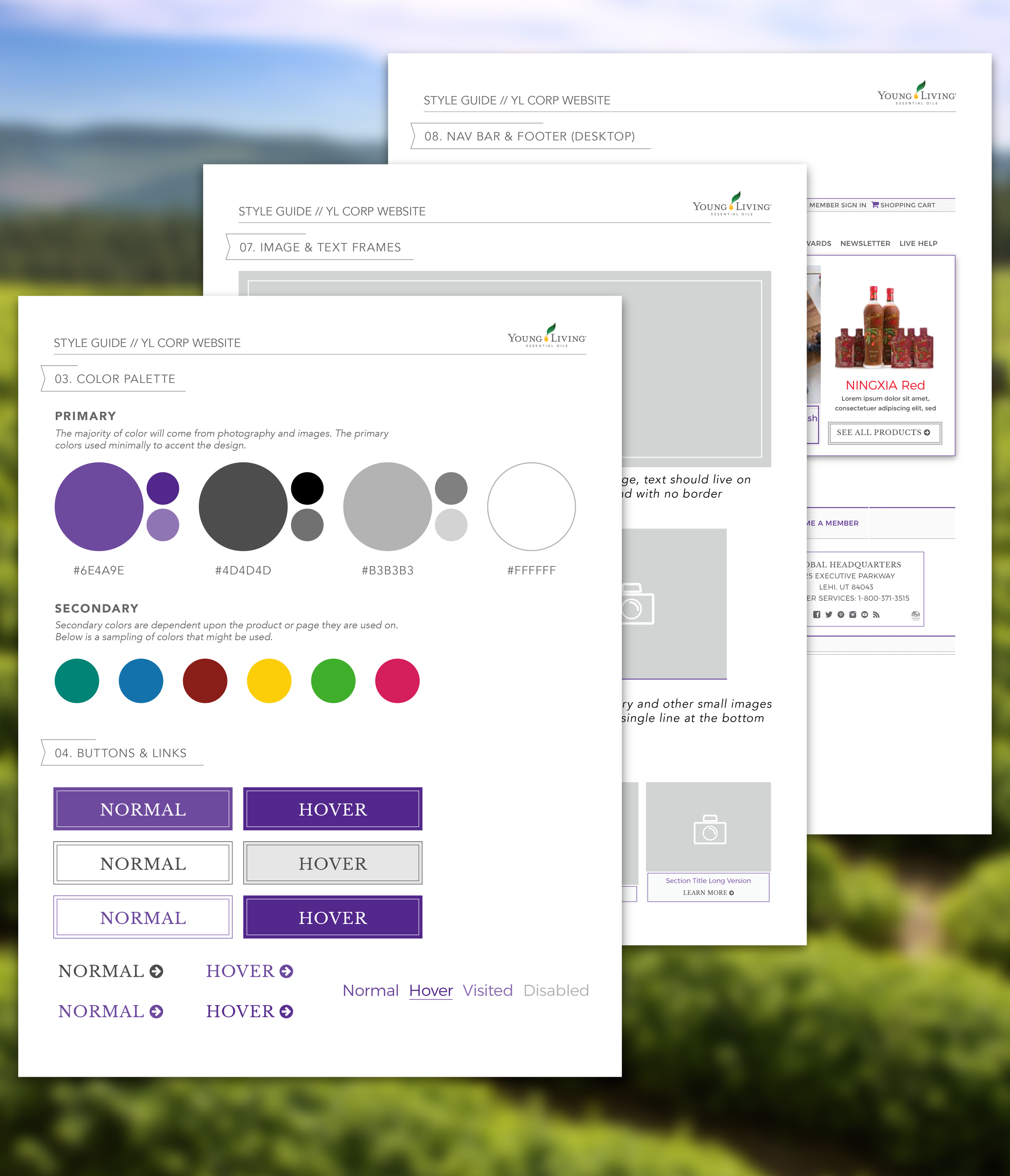 StyleGuide-01.png