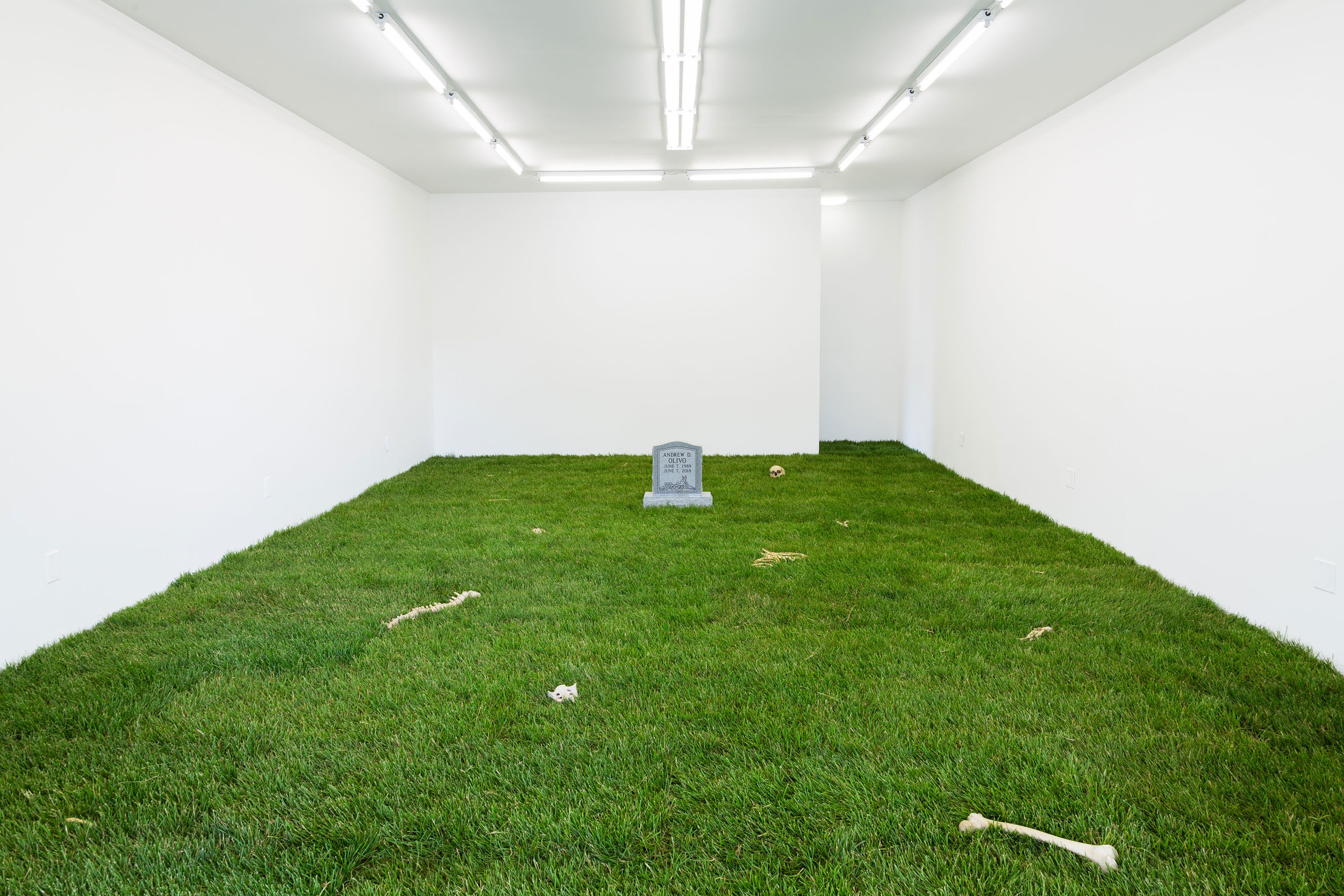 PUPPIES PUPPIES,  ANDREW D. OLIVO 6.7.1989 - 6.7.2018 , 2018   WHAT PIPELINE, DETROIT (INSTALLATION VIEW)   COURTESY THE ARTIST AND WHAT PIPELINE