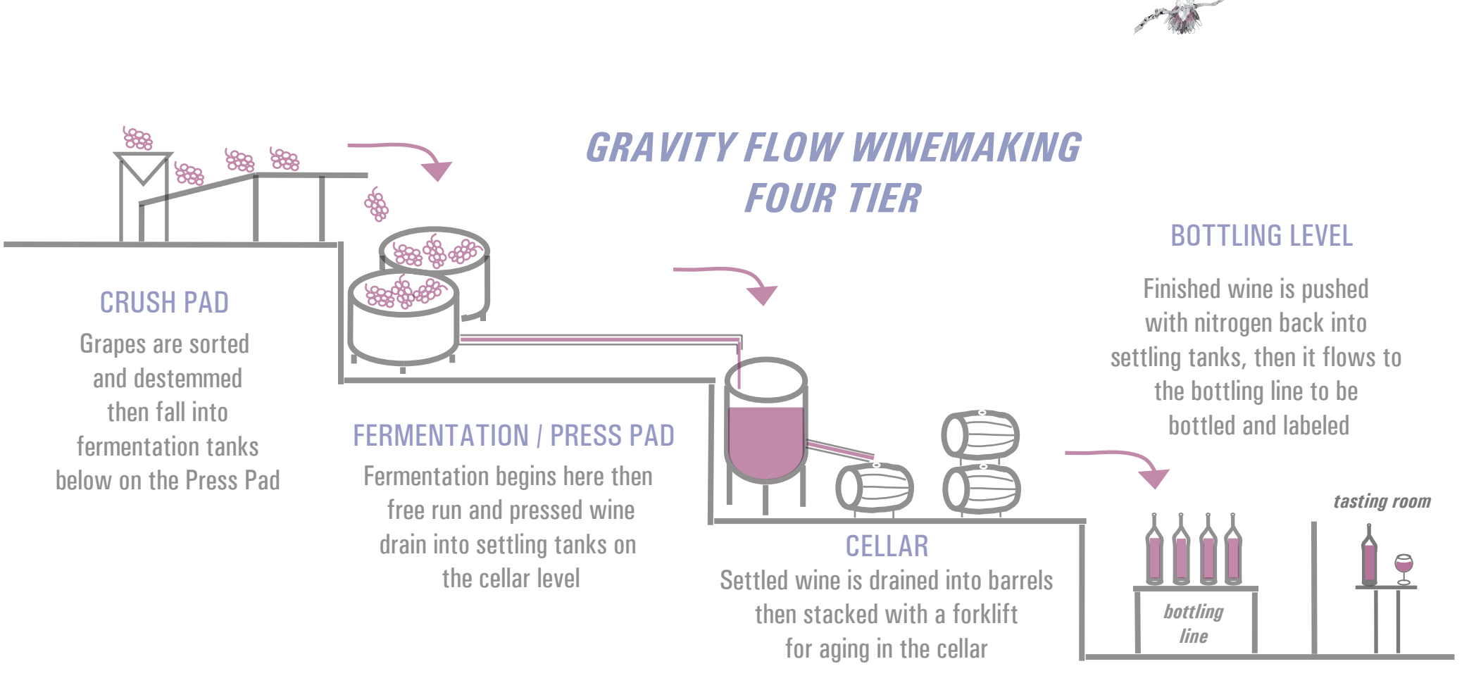 Moshin Gravity Flow Winemaking
