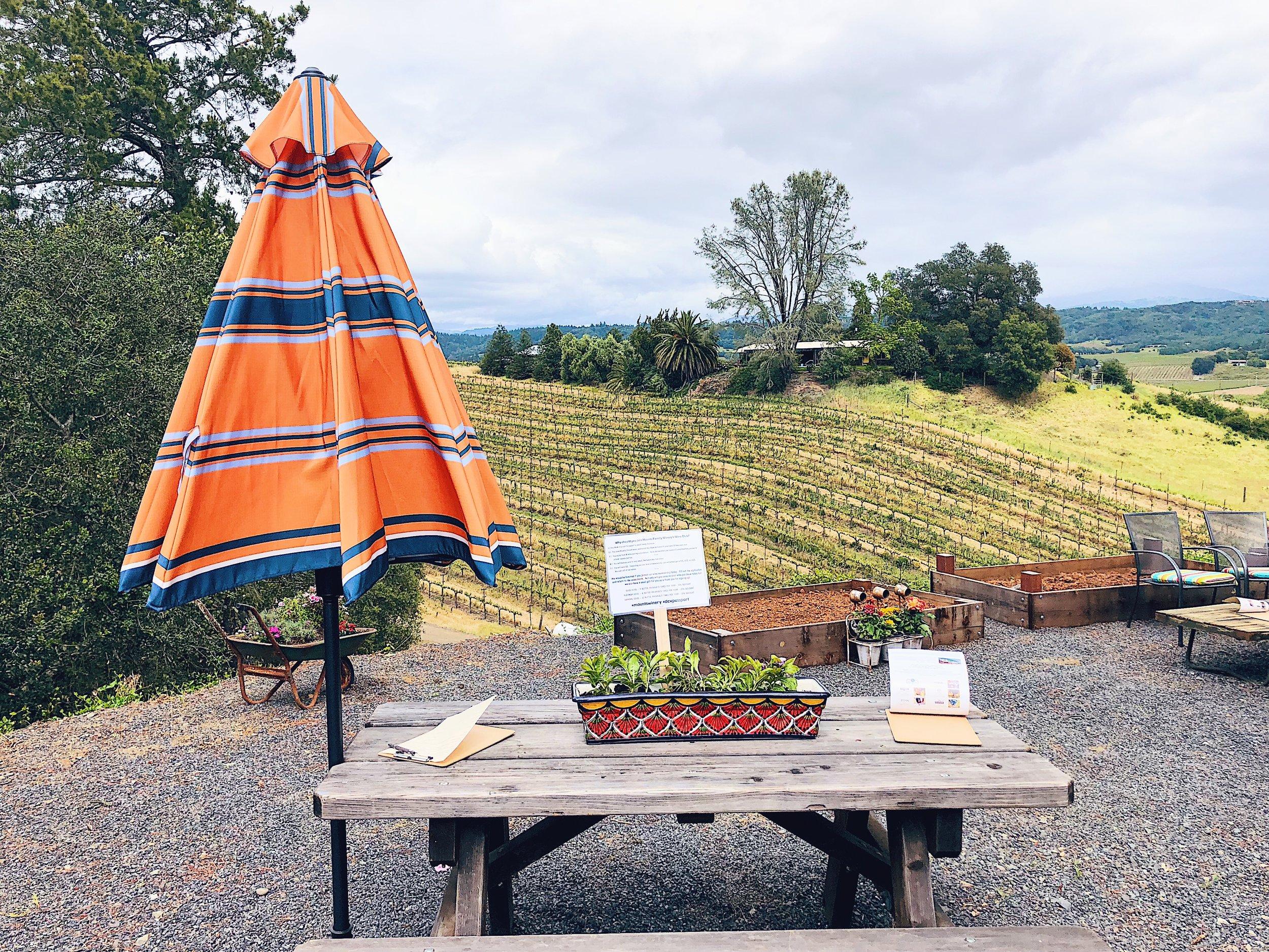 Dry Creek Vally Mounts Winery