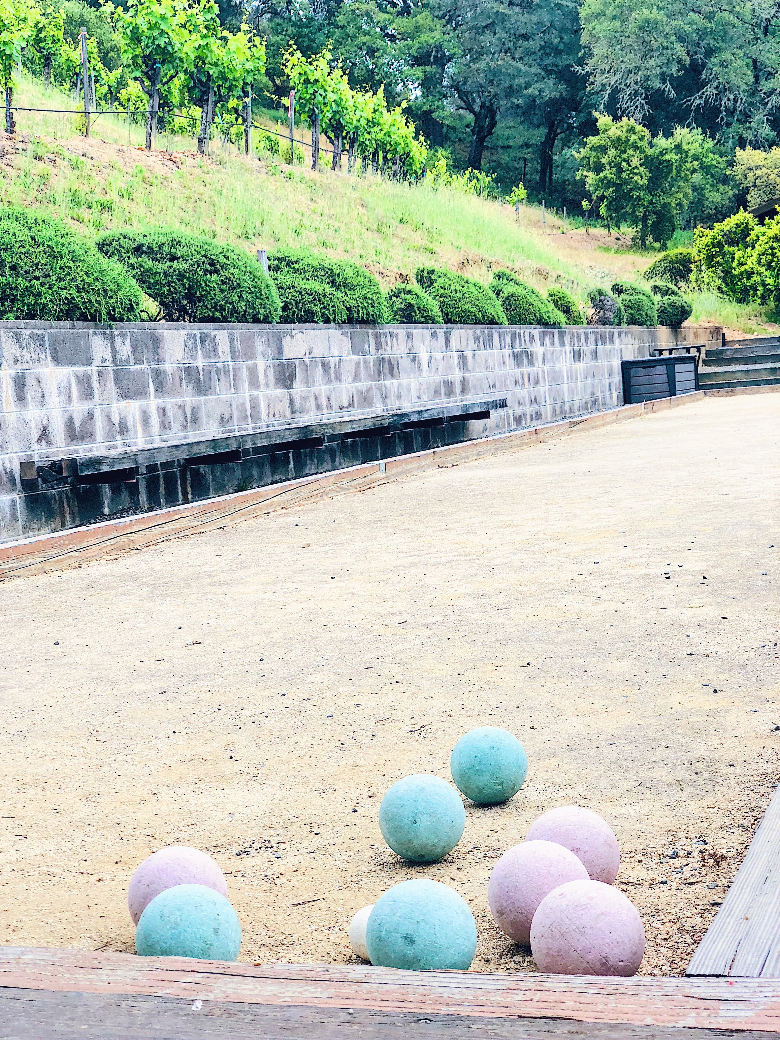 Bocce Ball At Pedroncelli