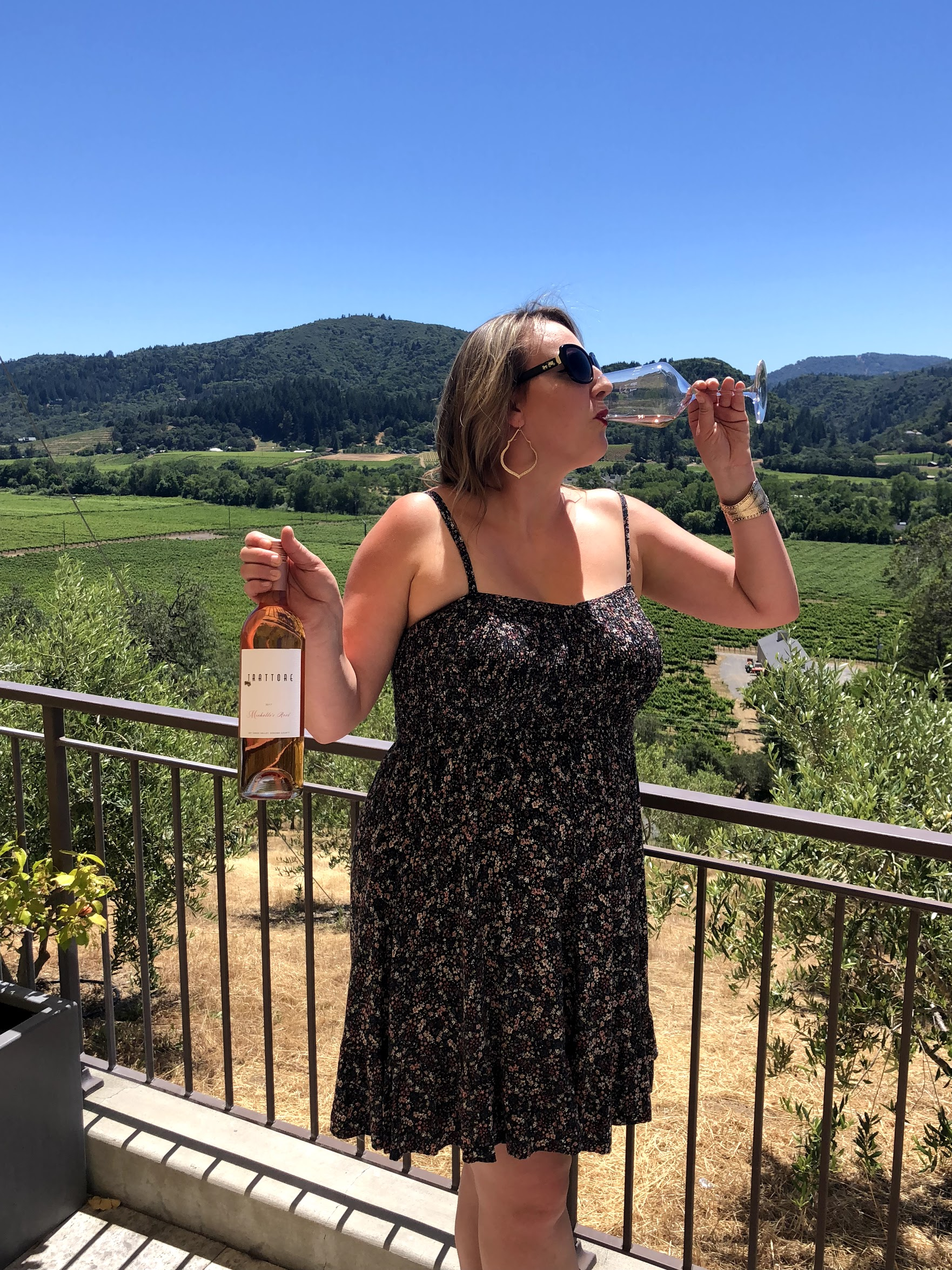 Sonoma Wine Life At Trattore Farms
