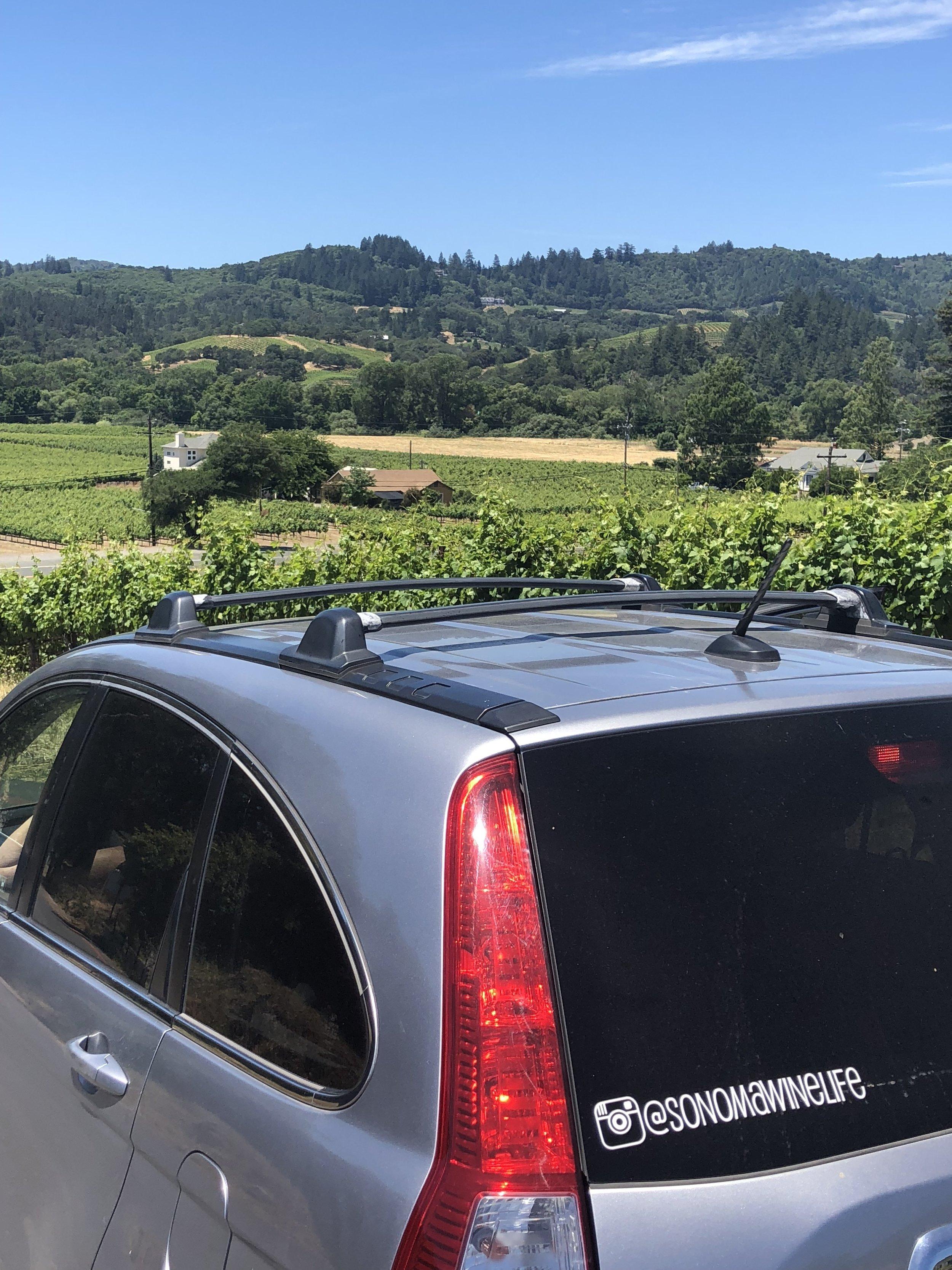 Sonoma Wine Life At Papapietro Perry Winery