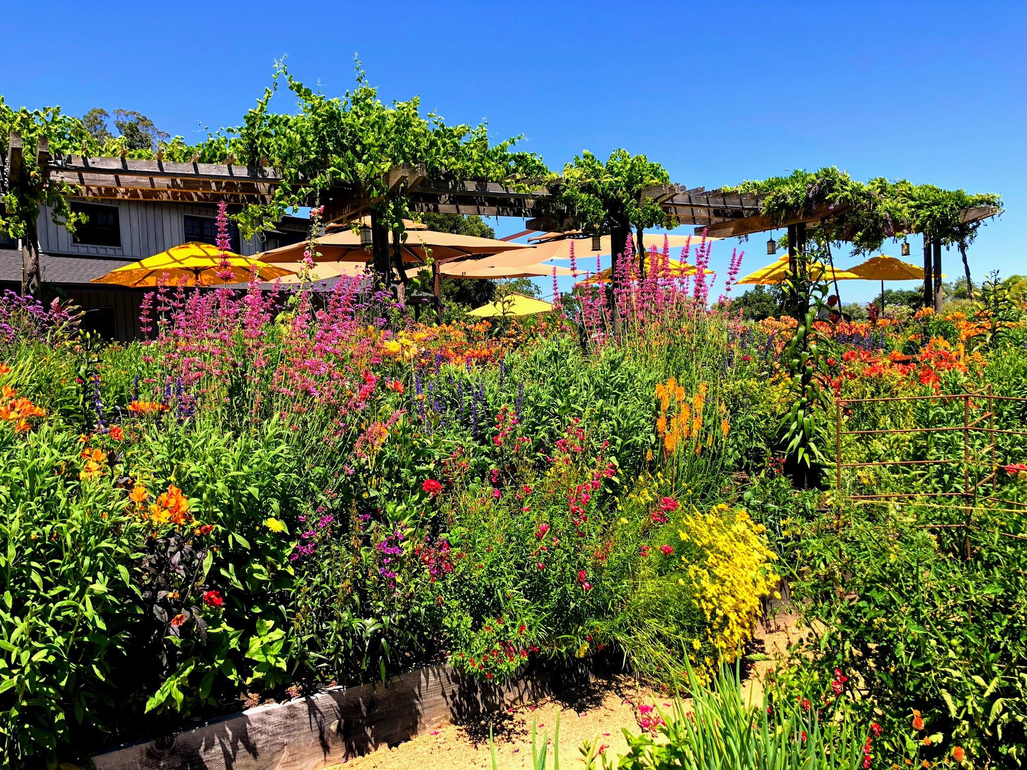 Lynmar Estate Gardens