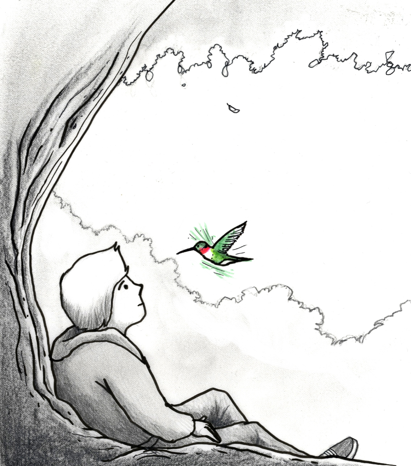 Boy and Hummingbird from  The Adventures of Enu . Illustration by  Blaze Syka .