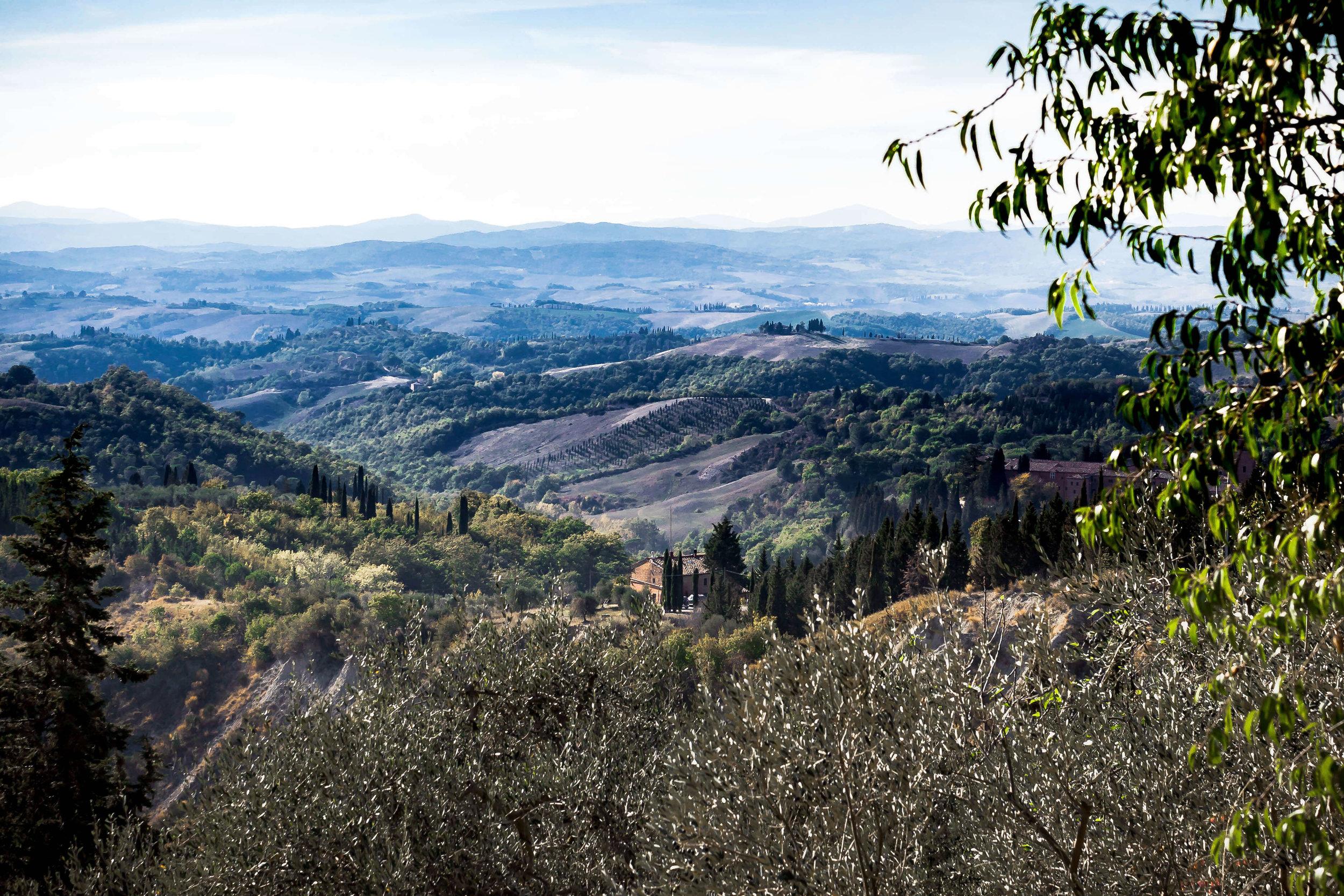 tuscany_view.jpg