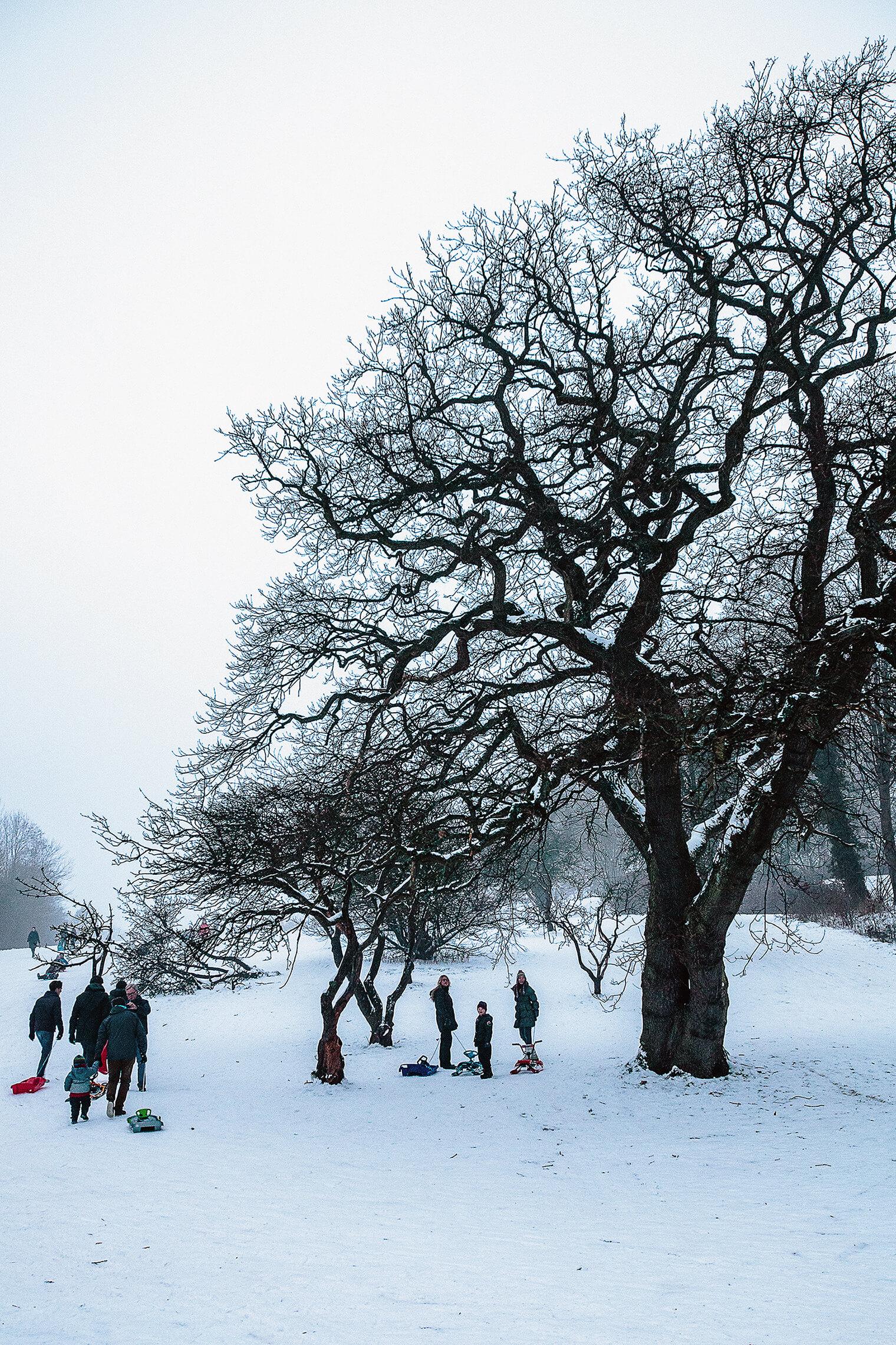 Sweden_outdoor_web.jpg