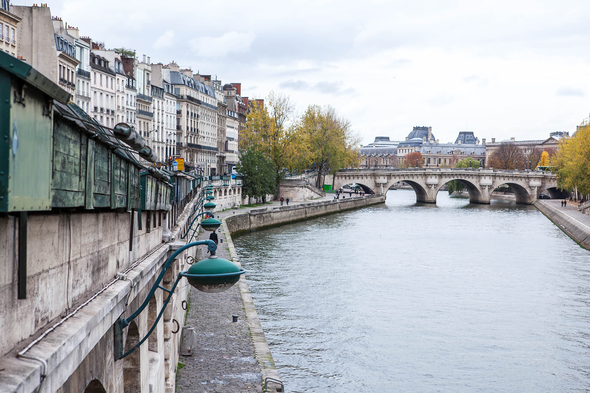 Parisinautumn_La_Seine_siforellana.jpg