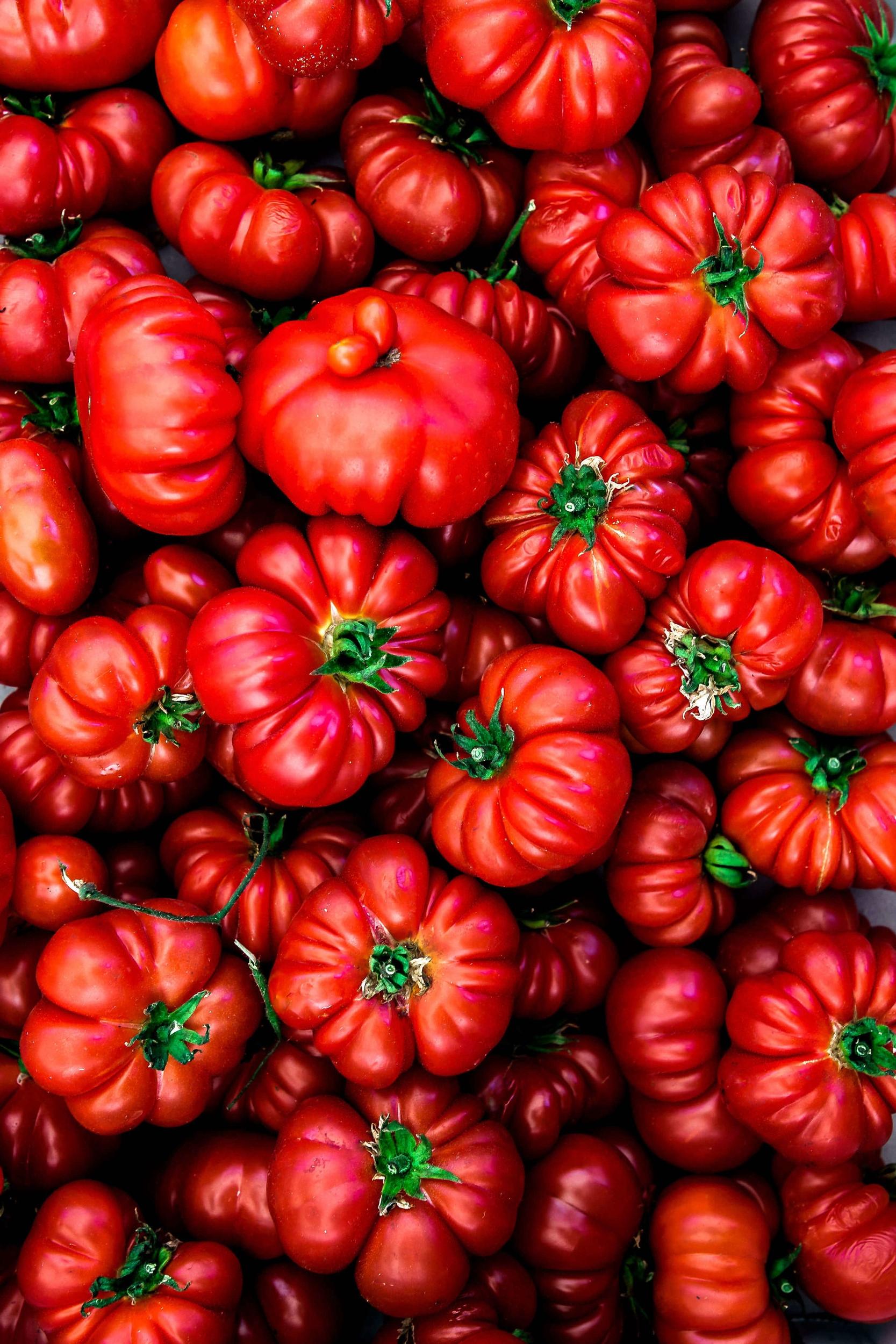 Siforellana_tomatoes.jpg