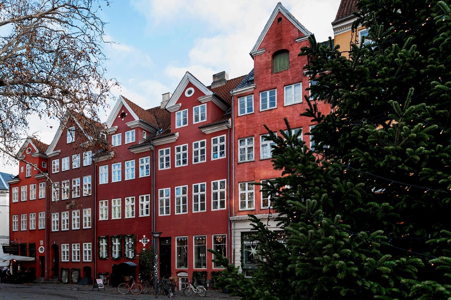 Copenhagen_workshop.jpg