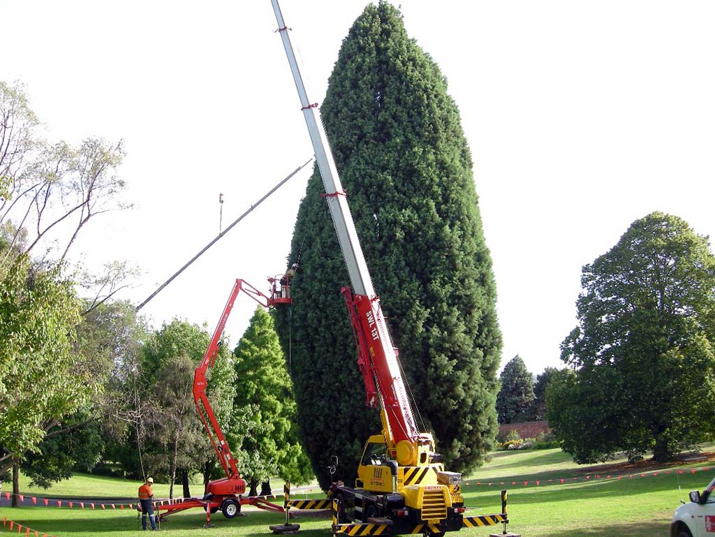 Integral Consulting Engineers Hobart Sculptures 04.jpg