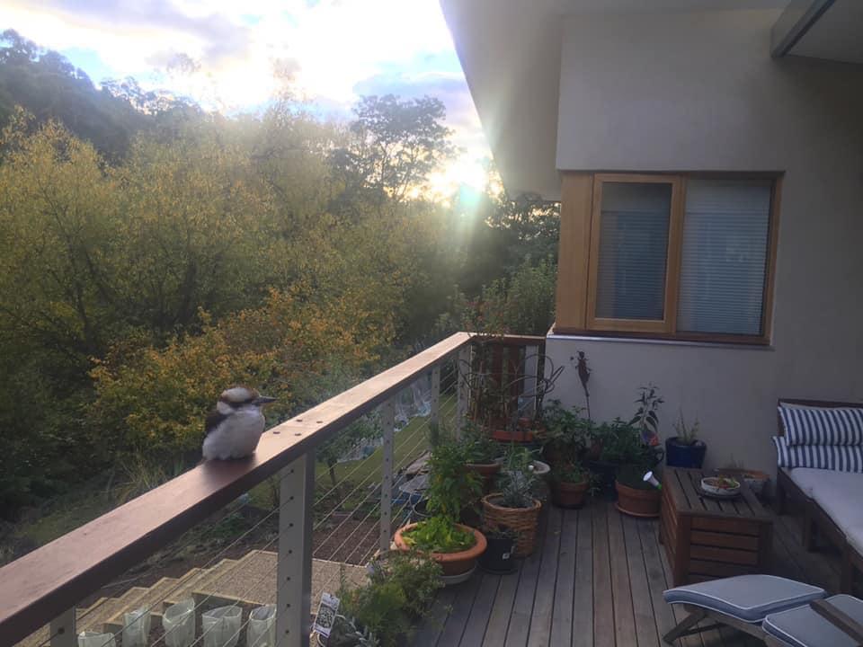 Integral Consulting Engineers Hobart _ Hempcrete Home Hobart.jpg