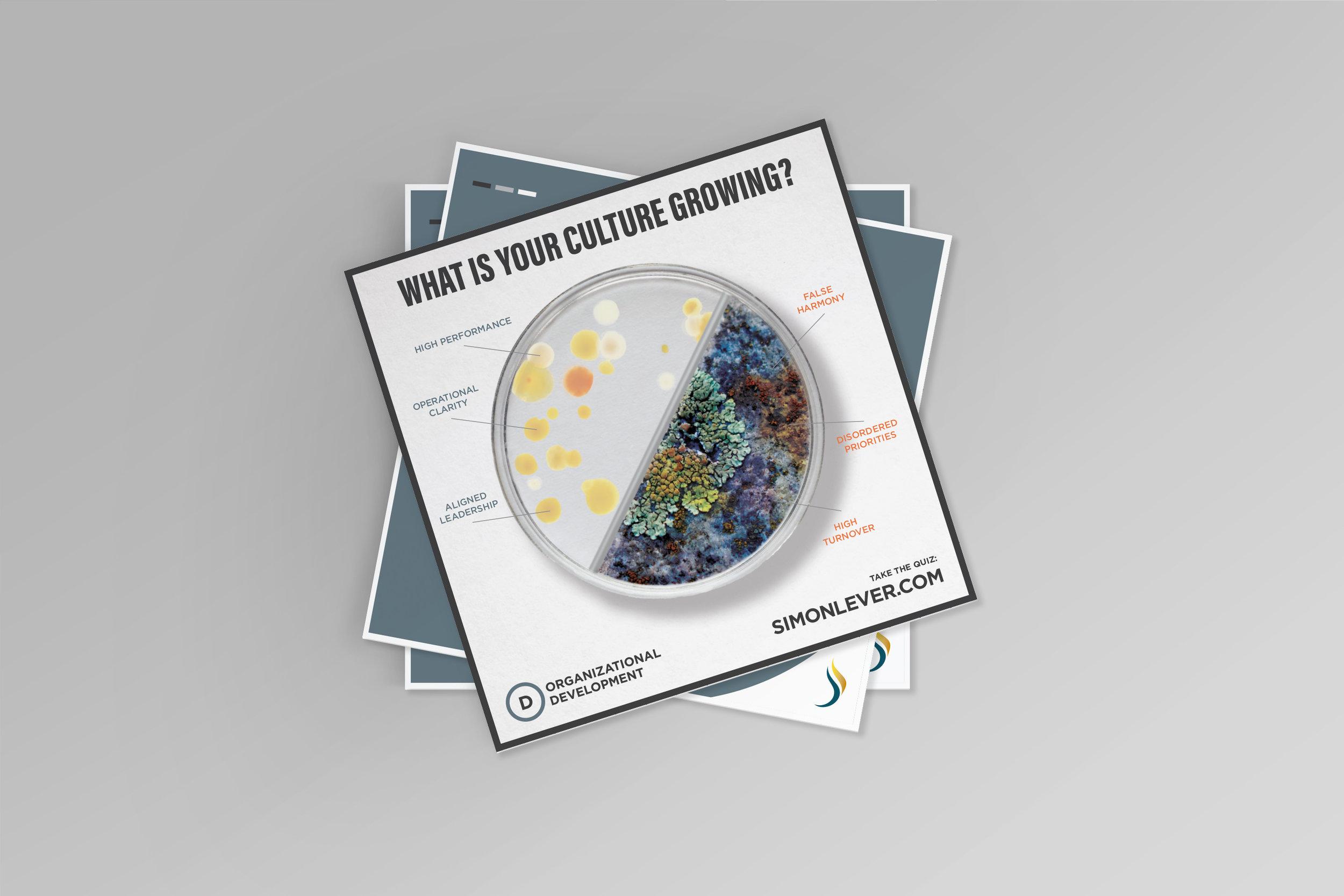 SimonLever-OrganizationalDevelopment-Business-GraphicDesign-PeteDesignCompany-Branding-CharCo–Office-BrandIdentity
