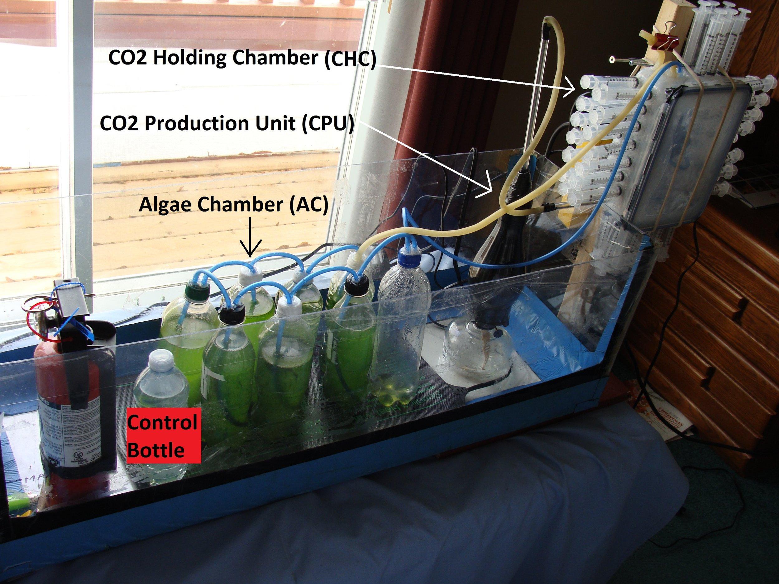 Figure 4. Assembled Algae-Based Carbon Capture System (ABaCaS).